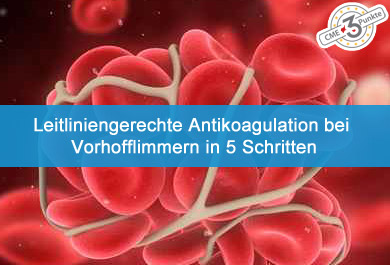 Leitliniengerechte Antikoagulation bei VHF