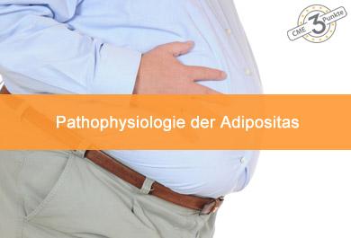Pathophysiologie der Adipositas