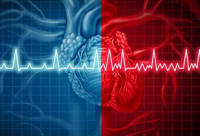 Highlights-EKG-Refresher-2021