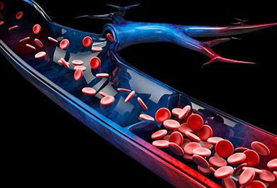 Venöse-Thromboembolien-bei-onkologischen-Patienten-–-Herausforderungen-zwischen-Leitlinien-und-klinischem-Alltag